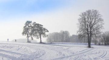 Wintertraum in Eichenstruth