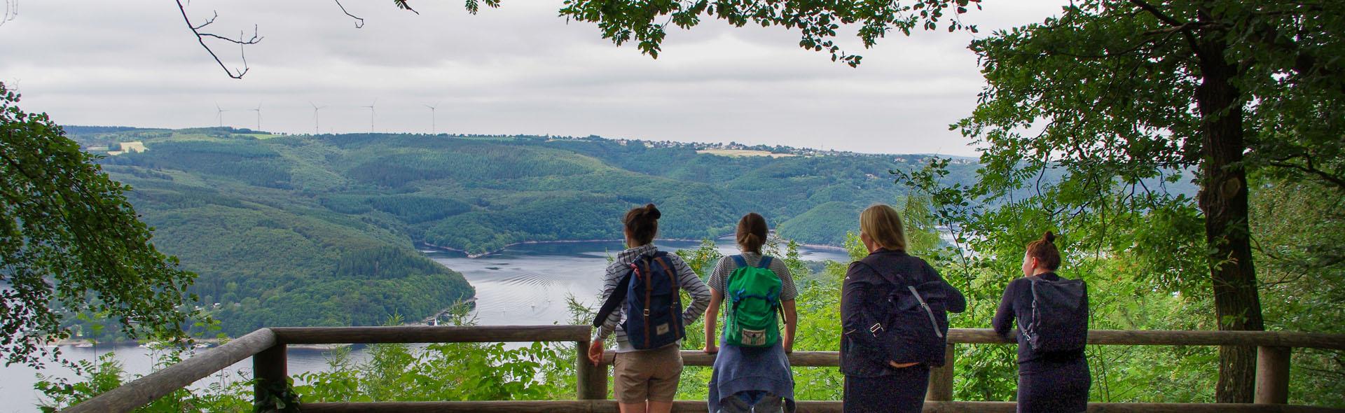 Der Wilde Weg in der Eifel